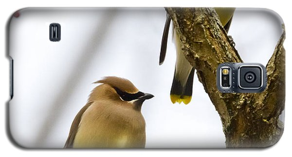 Galaxy S5 Case featuring the photograph A Pair Of Cedar Waxwings by Ricky L Jones