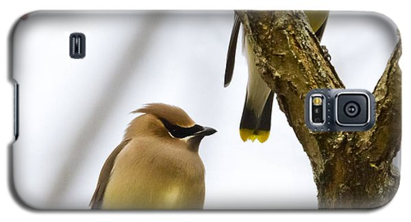 A Pair Of Cedar Waxwings Galaxy S5 Case