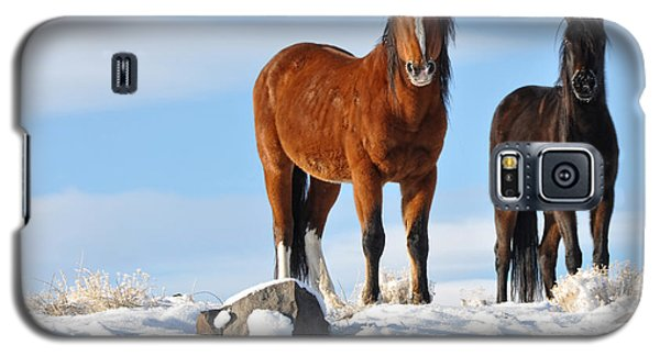Galaxy S5 Case featuring the photograph A Pair Of Wild Mustangs In Snow by Vinnie Oakes