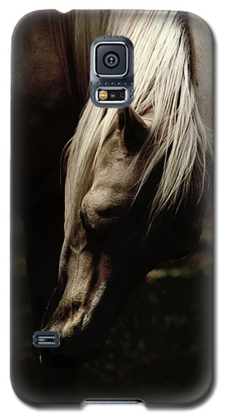A Pale Horse Galaxy S5 Case