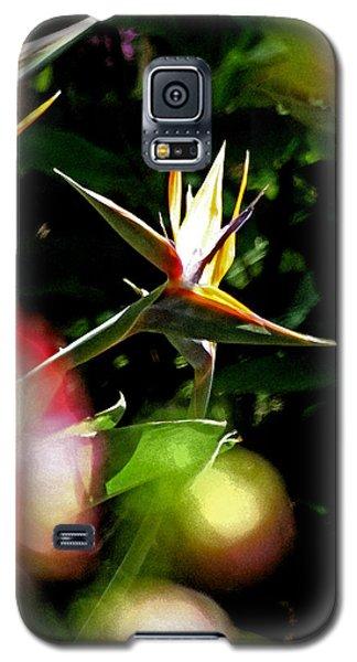 A Paridise Galaxy S5 Case