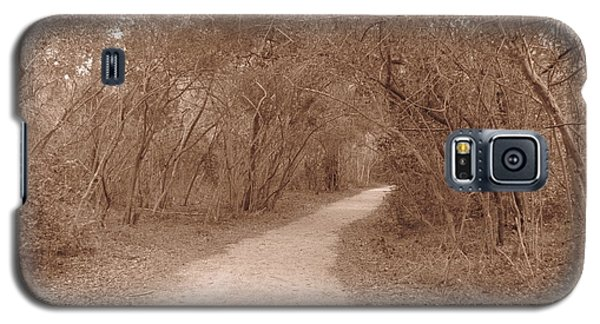 Galaxy S5 Case featuring the photograph A Path In Life by Beth Vincent