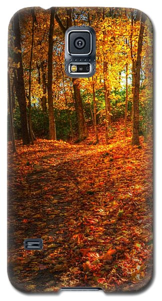 A Path Of Gold 2 Galaxy S5 Case