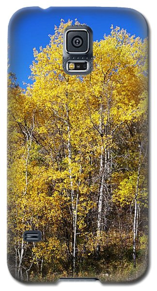 A Perfect Fall Day Galaxy S5 Case