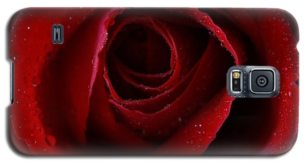 Galaxy S5 Case featuring the photograph A Perfect Rose by Keith Hawley