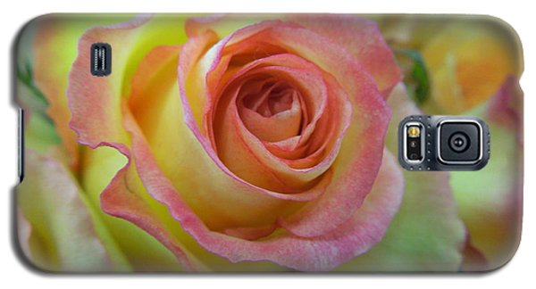 A Perfect Rose Galaxy S5 Case