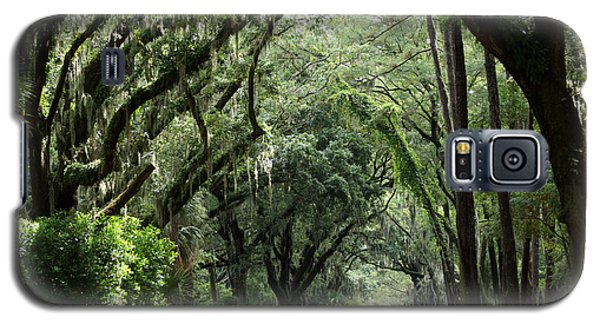 A Pretty Tree Covered Road Somewhere On Hilton Head Island Galaxy S5 Case by Kim Pate