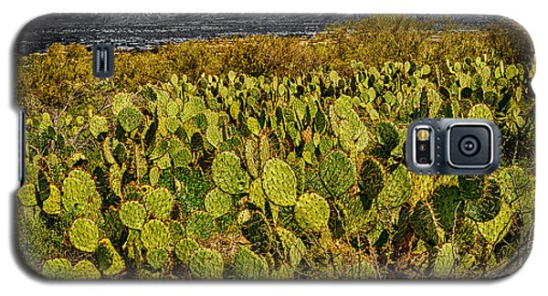 Galaxy S5 Case featuring the photograph A Prickly Pear View by Mark Myhaver