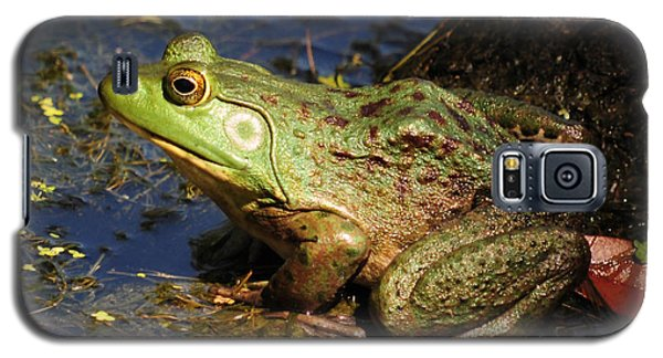 Galaxy S5 Case featuring the photograph A Prince Of A Frog by Kathy Baccari