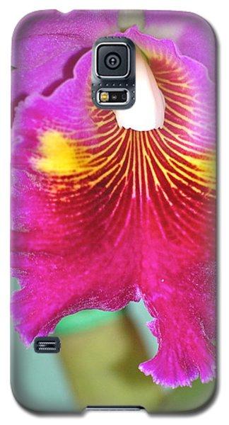 A Purple Cattelaya  Orchid Galaxy S5 Case