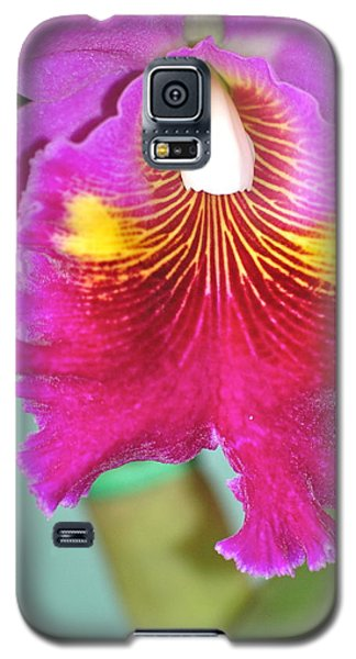Galaxy S5 Case featuring the photograph A Purple Cattelaya  Orchid by Lehua Pekelo-Stearns