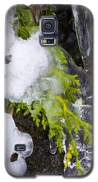 A Quick Freeze Galaxy S5 Case
