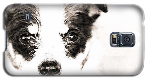 A Rat Terrier ... Mix Galaxy S5 Case