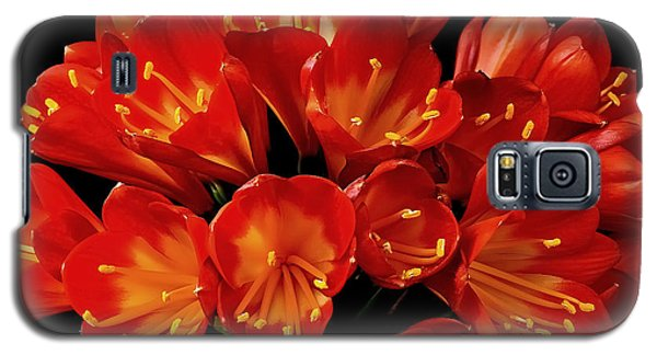 Galaxy S5 Case featuring the photograph A Red Bouquet by Marwan Khoury