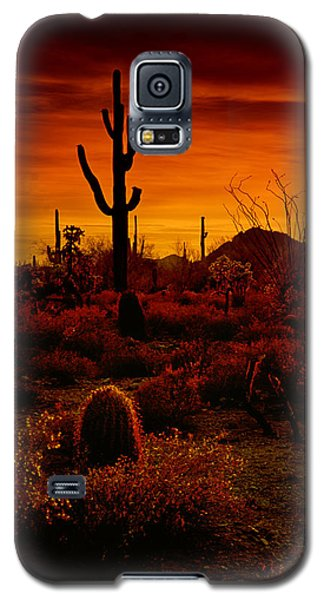 A Red Desert  Galaxy S5 Case