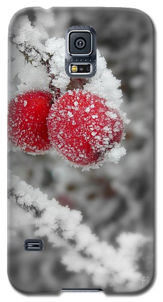 A Red Pair  Galaxy S5 Case by Heidi Manly