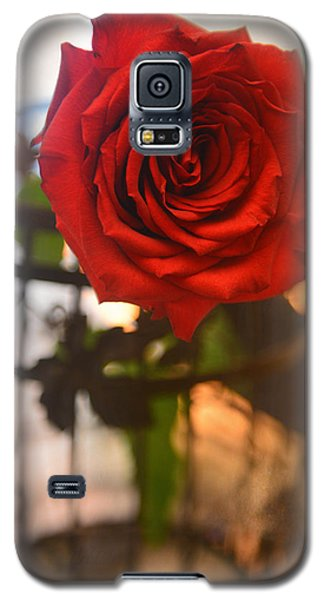 A Red Red Rose Galaxy S5 Case