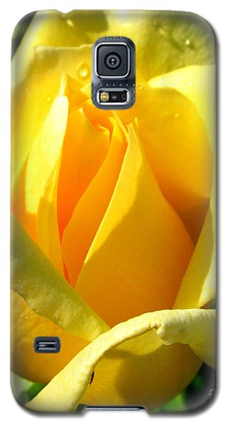 Galaxy S5 Case featuring the photograph A Rose For My Friend by Janice Westerberg