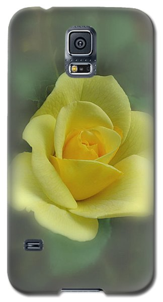 A Rose Is A Rose Galaxy S5 Case