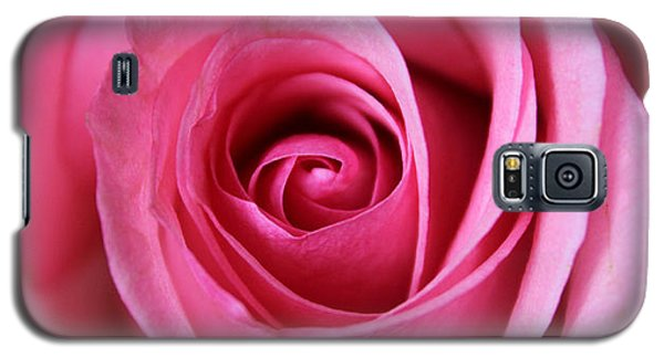 Galaxy S5 Case featuring the photograph A Rose Is A Rose Is by Silke Brubaker