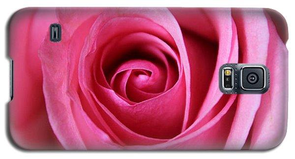 A Rose Is A Rose Is Galaxy S5 Case by Silke Brubaker