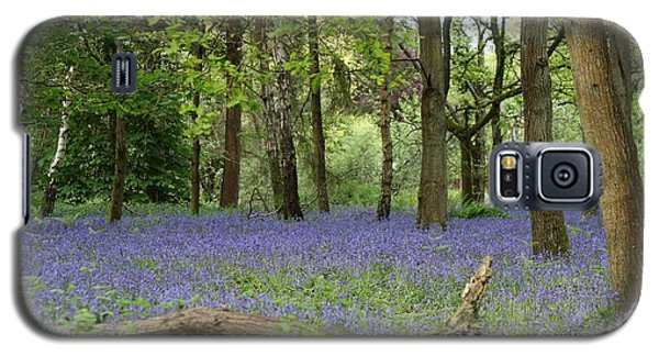 A Sea Of Bluebells Galaxy S5 Case
