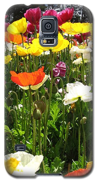 A Sea Of Poppies Galaxy S5 Case