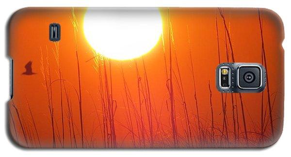 A Seagull's Sunrise Galaxy S5 Case