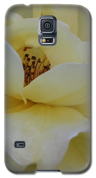 A Second Glance Galaxy S5 Case by Geri Glavis