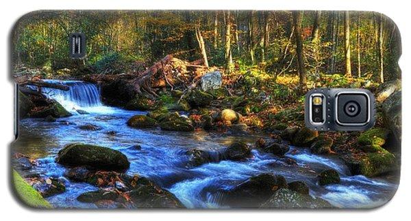 A Smoky Mountain Autumn Galaxy S5 Case