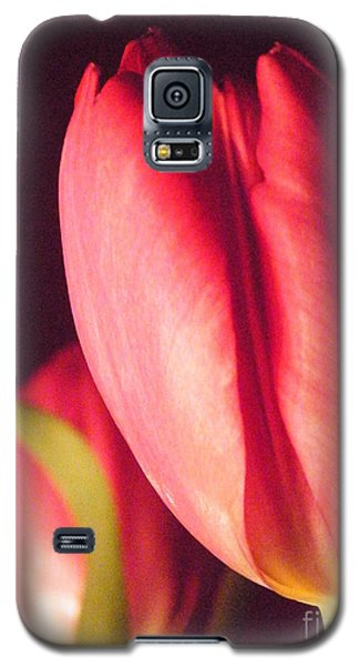 Galaxy S5 Case featuring the photograph A Soft Linearity  by Brian Boyle
