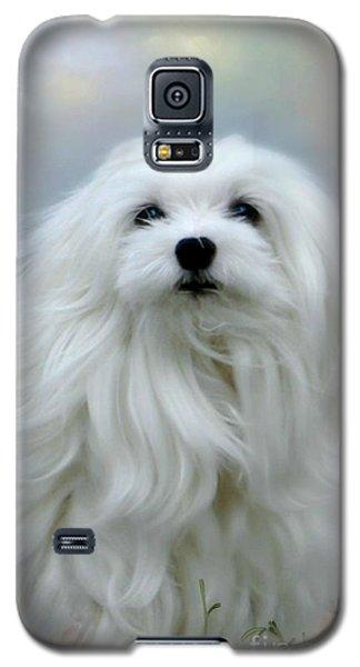 A Soft Summer Breeze Galaxy S5 Case by Morag Bates