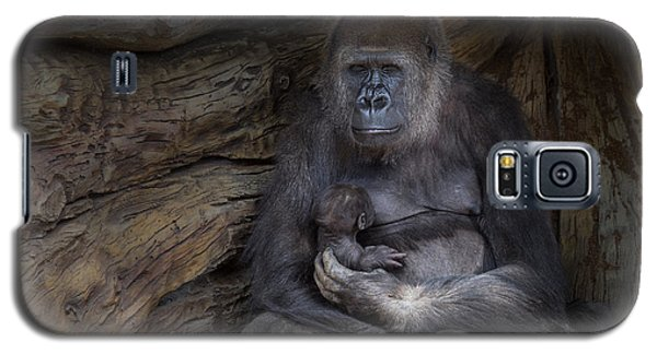 Gorilla Galaxy S5 Case - A Special Moment by Larry Marshall