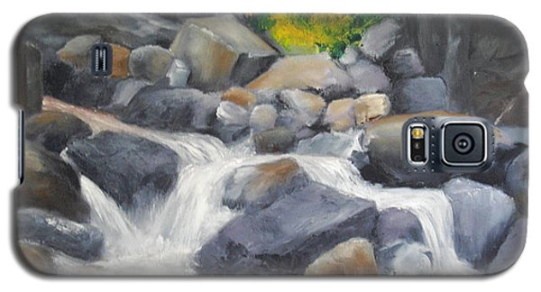 Galaxy S5 Case featuring the painting A Special Place   by Ellen Canfield