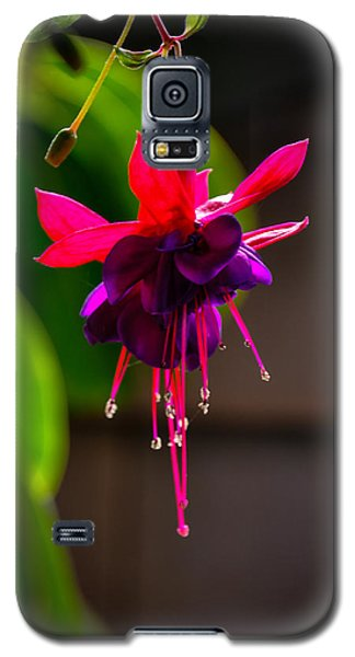 A Special Red Flower  Galaxy S5 Case