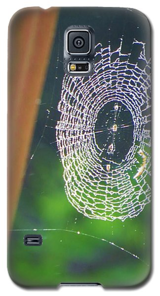 Galaxy S5 Case featuring the photograph A Spider Was Busy by Jeanette Oberholtzer