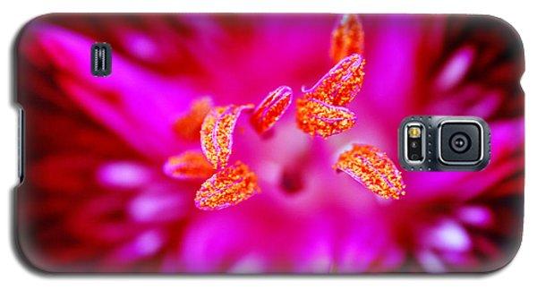 A Splash Of Colour Galaxy S5 Case by Wendy Wilton