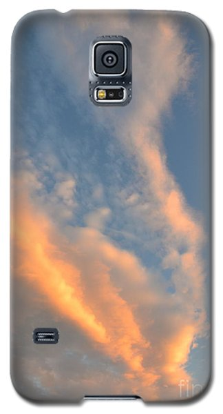 A Splash Of Peach Galaxy S5 Case