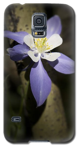 A Star Is Born Galaxy S5 Case by Morris  McClung