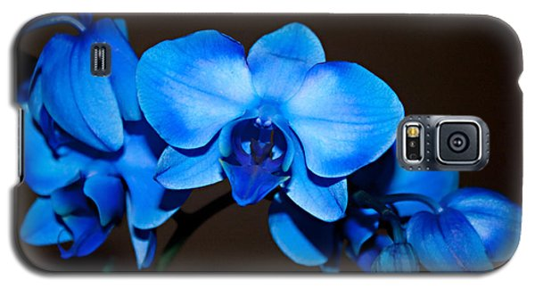 Galaxy S5 Case featuring the photograph A Stem Of Beautiful Blue Orchids by Sherry Hallemeier