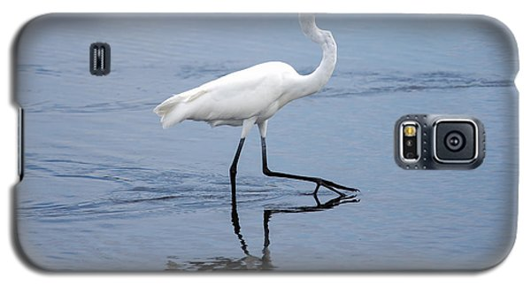 Galaxy S5 Case featuring the photograph A Stroll In The Marsh by John M Bailey
