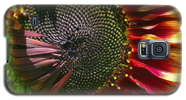 A Sunflower For The Birds Galaxy S5 Case