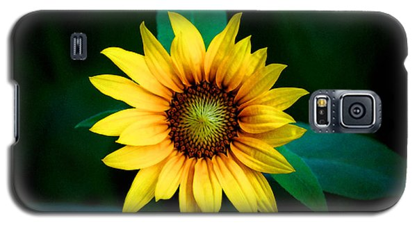 Galaxy S5 Case featuring the photograph A Sunflower Named Stella by Gwyn Newcombe
