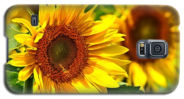A Sunny Day Galaxy S5 Case by Mike Martin