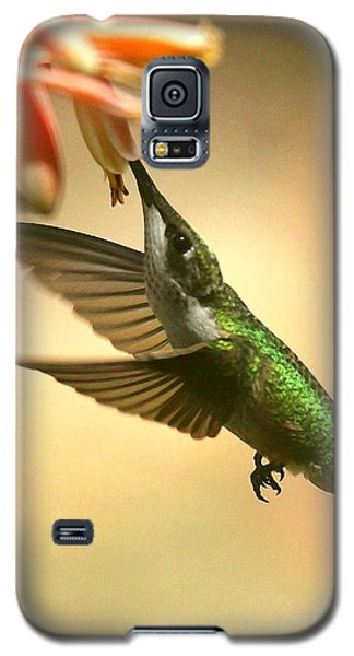 Galaxy S5 Case featuring the photograph A Tasty Treat by Myrna Bradshaw