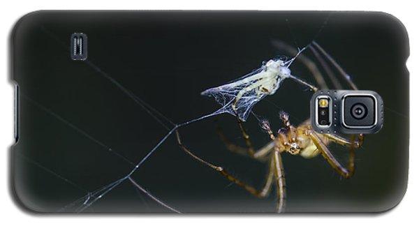 A Tasty Treat Galaxy S5 Case