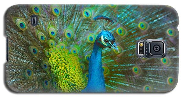 A Thousand Eyes Galaxy S5 Case