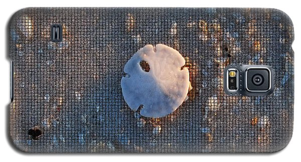 A Tiny Sand Dollar Galaxy S5 Case by Michele Kaiser