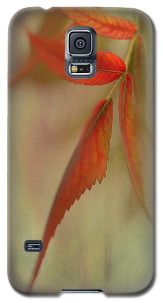 Galaxy S5 Case featuring the photograph A Touch Of Autumn by Annie Snel