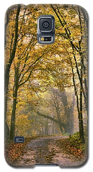A Touch Of Gold Galaxy S5 Case